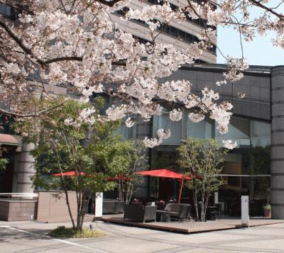 mariott_sakura_terrace.jpg
